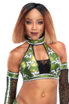 Alicia_Fox_Pro--070e530699fe2929715db6f1193d4be8.png